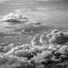 Cumulous Skyscape