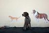 The Senceca Welcome Committee (MilkaWay) Tags: dog cat mural southcarolina birddog tessa 7yearsold gsp seneca oconeecounty germanshorthairedpointer vetclinic sc28 littledoglaughedstories