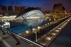Ciudad de las Artes y las Ciencias de Valencia. (M Roa) Tags: