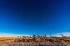 Winter Constellations in Moonlight (Landscape) (Amazing Sky Photography) Tags: autumn trees stars nightscape sirius orion moonlight prairie taurus gemini constellations canismajor m44 aldebaran beehivecluster winterstars orion'sbelt