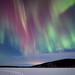 Advent auroras