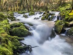 Galicia.- Barcia de Mera (LUIS FELICIANO) Tags: barciademera covelo rio cascada naturaleza montaña airelibre exterior olympus e5 lent1122mm galicia españa
