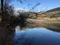 Loch Ard Reflection (troutcolor) Tags: lochard walk