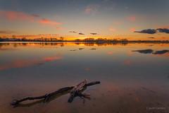 El abrazo del invierno (AvideCai) Tags: avidecai atardecer agua paisaje reflejos cielo nubes sigma1020