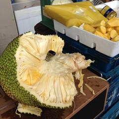jack fruit (shirl6900) Tags: fruit jackfruit