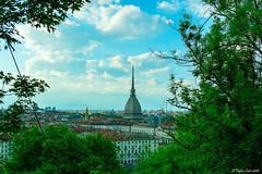 Torino (fabioluisi90) Tags: torino italia estate monte cappuccini vista turin italy piemonte piedmont verde green nikon d3200 35mm nikkor spring primavera