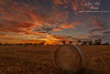 Sunset (dundox1) Tags: sunset landscape sky outdoor hay ngc