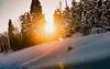 Leaving Basin (Karen McQuilkin) Tags: pines trees snowing sunset leavingbasin utah snowbasin karenmcquilkin