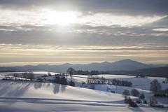 Winter in der Sächsischen Schweiz (Gr@vity) Tags: winter sächsischeschweiz olympus em1 schnee snow
