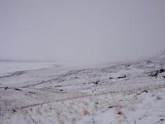 Antelope Island (prendlaphoto) Tags: antelope island utah great salt lake hike snow landscape