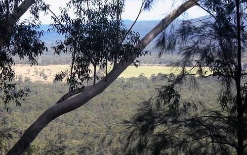 449 Mt Faulk Road, Cooranbong NSW 2265