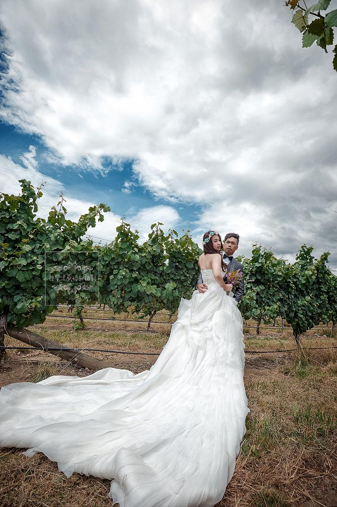 紐西蘭婚紗,Brightwater Vineyards婚紗,婚紗攝影,紐西蘭海外婚紗,自助婚紗,紐西蘭婚紗推薦,海外攝影,尼爾森Brightwater Vineyards婚紗,視覺流感婚紗攝影工作室