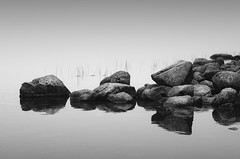 stones | maine, usa 2013 (philippdase) Tags: nikon nikond7000 usa newengland maine acadianationalpark stones blackandwhite fineart philippdase