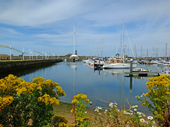 Whitehaven (tubblesnap) Tags: flowers lake marina coast harbour yacht district cumbria whitehaven