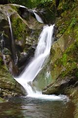 Los Cedros Waterfall (sphaisell) Tags: waterfall ecuador cloudforest cascada loscedros bosquenublado cascadaa