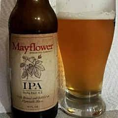 Mayflower IPA (Pak T) Tags: cameraphone beer glass bottle drink massachusetts beverage ale plymouth alcohol ipa tmobile mayflower mayflowerbrewing untappd samsunggalaxys2 samsunggalaxysii