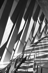 Urban jungle (mimo b. rokket) Tags: light shadow blackandwhite bw abstract monochrome lines architecture modern stairs licht geometry treppe architektur forms sw shadowplay monochrom curve schatten abstrakt abstractarchitecture geometrie formen linien schwarzweis abstraktearchitektur canonefs55250mmf456isstm