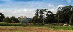 Belvoir Castle 3 (1 of 1) (cajsparky) Tags: castle landscape leicestershire vale belvoir knipton