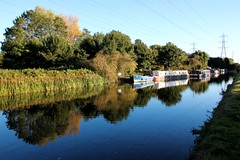 Canal (Andrea Kennard) Tags: autumn trees reflection water beautiful river boats canal still peaceful pampasgrass barges