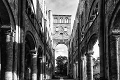 L'abbaye de Jumièges  (ou ce qu'il en reste) (Lesquinois) Tags: architecture bâtiment ville abbaye jumièges agglomération