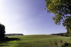 IMG_2880-Modifier (mycenium) Tags: panorama belgium belgique farm bow land prairie chateau region campagne brabant ferme bois vache wallon wallonie grez grezdoiceau laurensart wallone doiceau