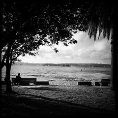 Rose Bay, Sydney Harbour (Albion Harrison-Naish) Tags: sydney streetphotography australia newsouthwales sydneyharbour iphone rosebay sydneystreetphotography hipstamatic blackeyssupergrainfilm iphone5s janelens albionharrisonnaish