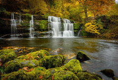 Sgwd y Pannwr Waterfall (rob-nelson) Tags: uk green fall water yellow southwales wales river waterfall stream autum y south country porth beacon cwm pontneddfechan sgwd neath mellte pannwr clungwyn panwar waterfallcountry sgwdypannwr brecom cwmporth clungwynwaterfallonthemellteriver