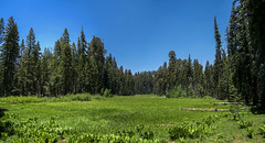 A Clear Day At Crescent Meadow (6x Pano) (J Swanstrom (Check out my albums)) Tags: park blue sky green photography j kodak pano meadow national sequoia dx7590 sequoianationalpark crescentmeadow swanstrom