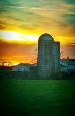 IMG_5062.JPG (Jamie Smed) Tags: iphoneedit handyphoto jamiesmed app snapseed barn 2015 beautiful farm beauty green skyline grass mobileography sun sunrise iphoneography orange field light sky twitter shadows shadow facebook skies iphonephoto mextures landscape rural ohio midwest autumn fall phoneography iphoneonly photography clouds november mobilography mobilephotography country mobilephoto