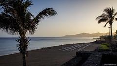 A la mejor hora (SantiMB.Photos) Tags: summer espaa beach geotagged atardecer dusk lanzarote playa canarias palmeras palmtrees verano esp puertodelcarmen 2tumblr sal18250 2blogger vacaciones2014 geo:lat=2892032361 geo:lon=1365821600