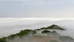 Auf dem Pedreira . . . (norbert.r) Tags: flickrchallengegroup gx80 madeira landscape lumix microfourthirds nature fanal