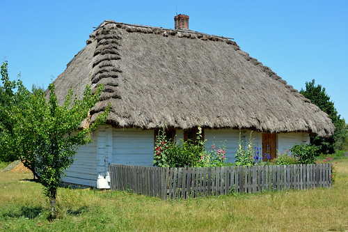 a thatched roof hut