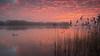 Nice sunset tonight ... (Alex Verweij) Tags: sunset almere weerwater sun zonsondergang winter 2017 water vuurtoren uitkijktoren zwaan swan cold 2 orange oranje