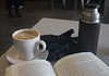 latte & book (tangocyclist) Tags: latte book thermos