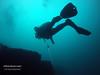 Chicharvel (YellowSingle 单黄) Tags: socoa scuba diving plongée tech ocean atlantic gopro underwater chicharvel hendaye