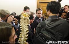 Rubio Faces Spineless Vote on Tillerson (Greenpeace USA 2016) Tags: tillerson rex donald trump secretaryofstate capitol capital washington dc oil fossilfuel exxon mobile climatechange denier usa