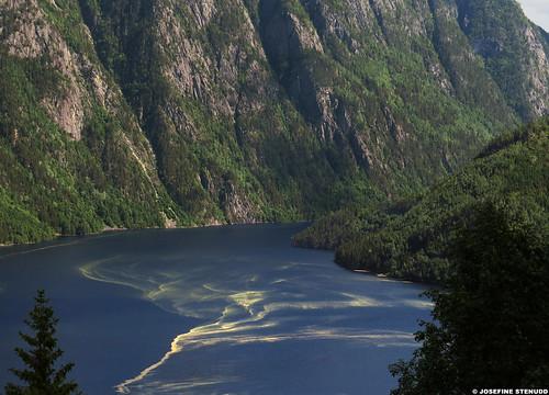 20160606_7 Pollen on lake Bandak | Dalen, Norway
