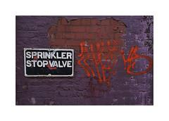 Just writing on the wall (CJS*64) Tags: wall graffiti sign spinkler valve stopvalve manchester cambridgestreet colour purple read cjs64 craigsunter cjs nikon nikkorlens nikkor nikon1 nikonj5 j5 abstract red writing