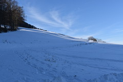 PHO_0169 (Dimi_M) Tags: neige soleil nature foret