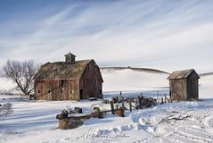 Winter Isn't Over Yet (NikonDigifan) Tags: barn oldbarn dilapidated rural agriculture snow winter easternwashington palouse palousehills washington niksoftware colorefexpro nikond750 nikon28300 mikegassphotography