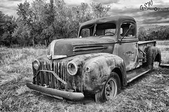 Abandoned 1942 Ford Pickup Truck (Gavmonster) Tags: nikon nikond7000 d7000 gswphotography land abandoned broken decay disused dramatic urbex urbanexploration grass wild damage derelict rust wheel tyre trees ford pickup truck stepside rusty blackandwhite bw monochrome blackwhite bandw