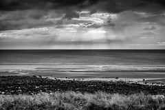 Seascale Mono (Sandy Sharples) Tags: sea seascape seaside grass rocks sunburst cumbria monochrome blackandwhite landscape