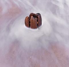 Surrounded (kellystark92) Tags: beach coast coastal sea sand stump wooden slowshutterspeed milky abstract northeastcoast seatonsluice northumberlandcoast seaside beachphotography