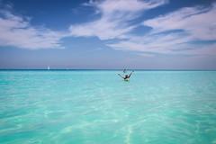 Caribe!! Cuba #cayosantamaria paraíso #playa #tesoro #piratasdelcaribe (DiegoParra8) Tags: arena cielo agua clave meliálasdunas cubanos santamaría santaclara playa paraíso cuba caribe