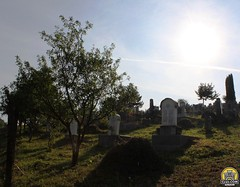 Izvoru Criului, judeul Cluj - cimitirul (cluj.com) Tags: biserica cluj piatra copac crisului cimitir reformata calvina funerar judet izvoru