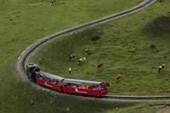 BRB Brienz - Rothorn - Bahn Dampflokomotive H 2/3 Nr. 12 mit Taufname Kanton Bern ( Hersteller SLM Nr. 5456 - Baujahr 1992 - lbefeuert ) unterwegs bei ... im Berner Oberland im Kanton Bern der Schweiz (chrchr_75) Tags: eisenbahn august steam christoph bahn schweizer vapor locomotora dampflok dampflokomotive 2015 dampfmaschine vapeur stoomlocomotief  chrigu vapore  bahnen chrchr hurni chrchr75 chriguhurni albumdampflokomotiveninderschweiz chriguhurnibluemailch albumbahnenderschweiz2015712 albumzzz201508august