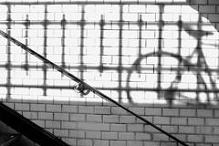 Shadow | Justine Magny (Justine Magny) Tags: street light shadow blackandwhite paris lines bike dark grey darkness noiretblanc metro sombra ombre lumiere simplicity moment simple rue montparnasse unexpected minimalist velo ligne sharpes inesperado