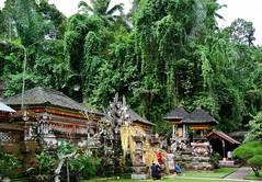 Pura Gunung Kawi (myview11) Tags: travel bali temple 1 nikon gunung pura v1 kawi myview11