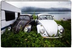 Old married couple (Torbjrn Tiller) Tags: auto blackandwhite classic vw volkswagen boble par kjrester veteranbil ektepar vwboble