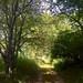 Trustom Pond NWR